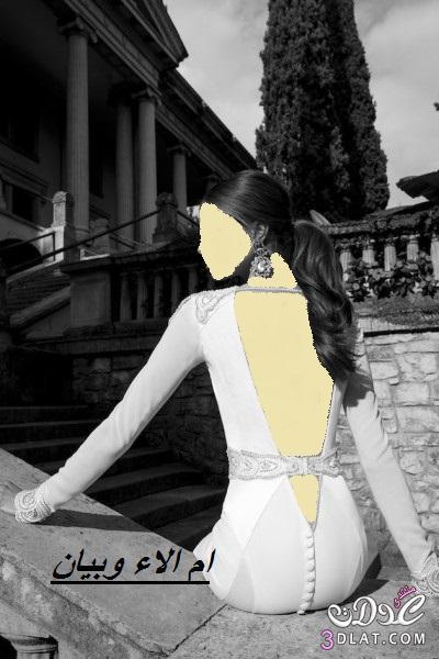 فساتين زفاف من berta لعروس 2014,احلى فساتين زفاف 2014 ج 2