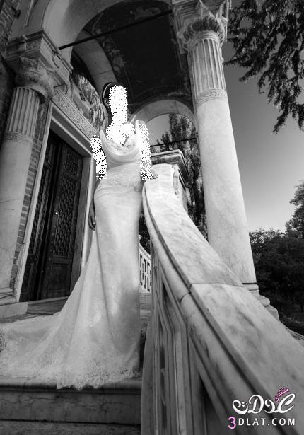 فساتين زفاف روعة، أجمل فساتين الزفاف، فساتين زفاف ناعمة 2014