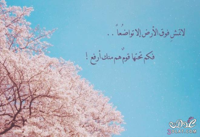 أحدث وأجمل الصور ألإسلاميه 2014