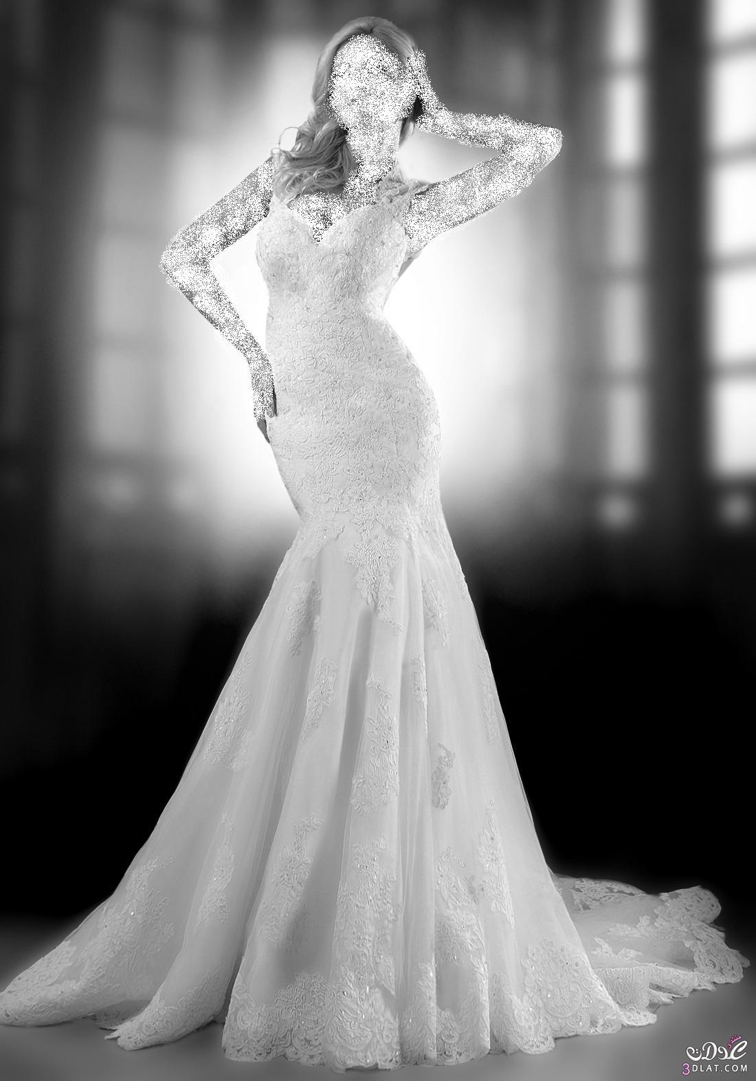 فساتين زفاف قمة الرقة و البساطة ، أجمل فساتين الزفاف لعروس أنيقة و جميلة