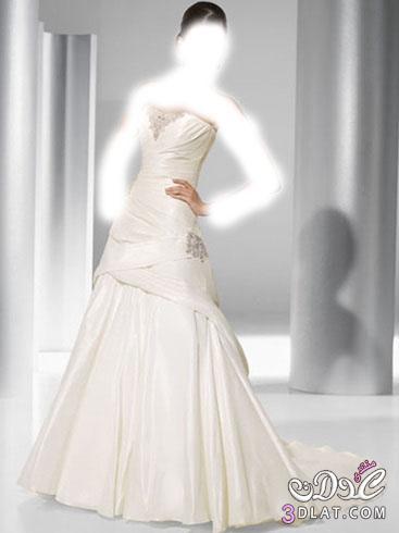 فساتين زفاف فساتين 2014, فساتين