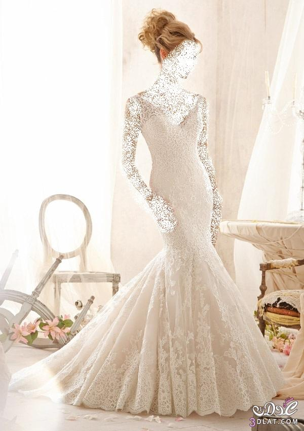 فساتين زفاف رائعة، أجمل فساتين