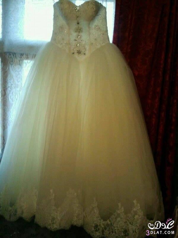 فساتين زفاف 3dlat.com_1392326067