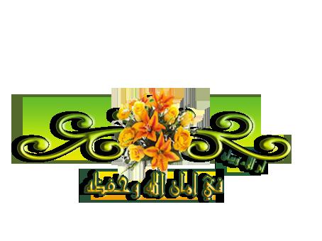 2014,2015 3dlat.com_1392567105