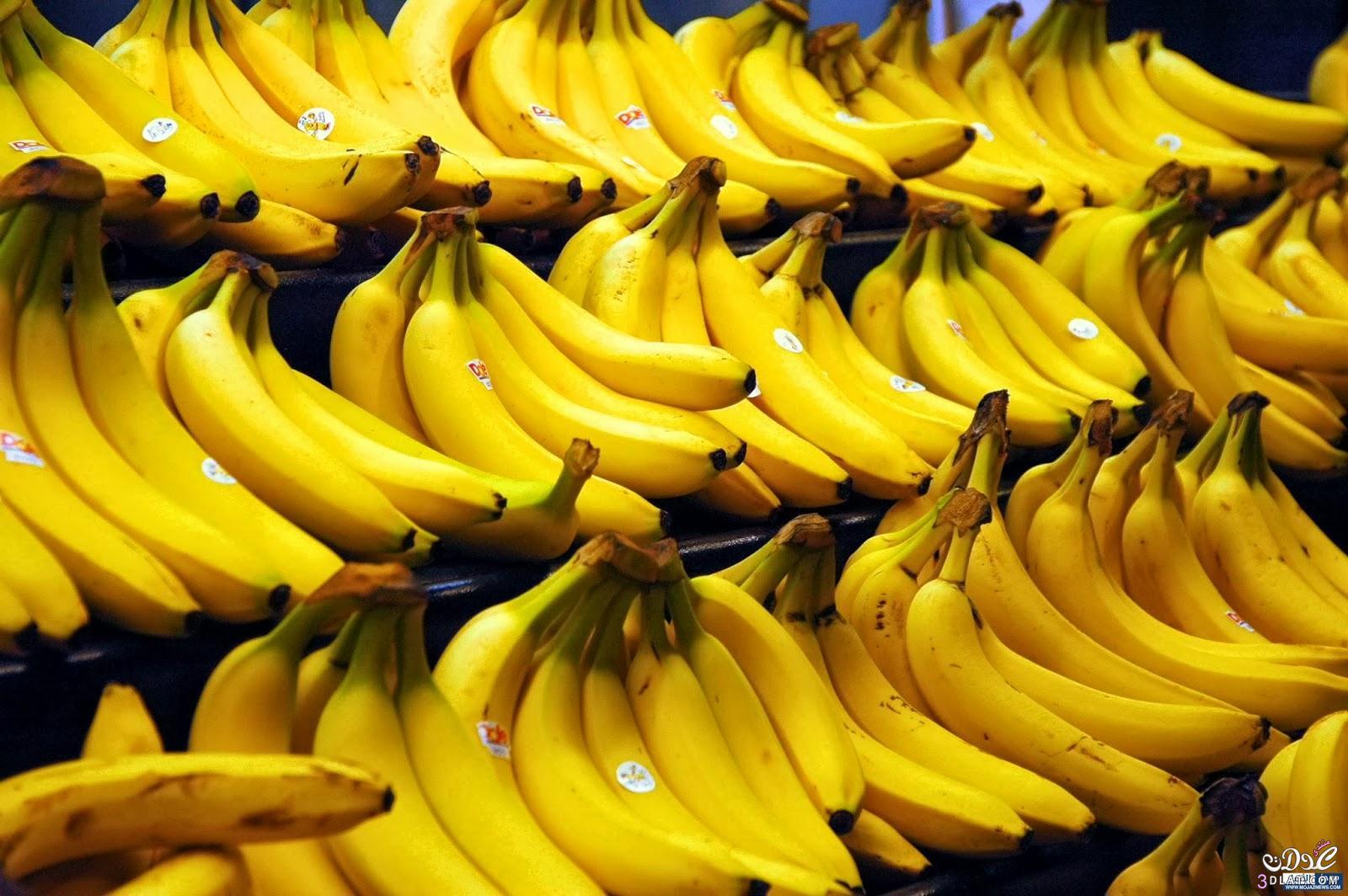 فوائد الموز الطبية لجسم الانسان