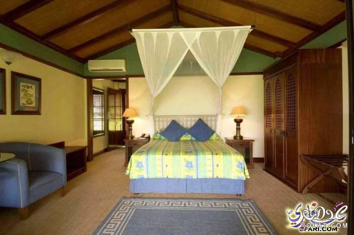 رحلة الى الموزمبيق 3dlat.com_13928454974