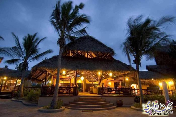 عدلات الموزمبيق