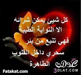 3dlat.com_13932777897