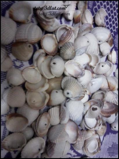 عقد من اصداف البحر  عقد من الخرز واصداف البحر من صنع ايدى