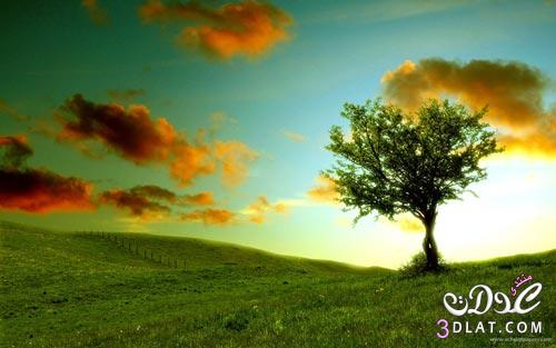 طبيعية 2014 اجمل الطبيعة2015 طبيعية