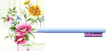 فساتين للمواليد البنوتات لربيع وصيف 2019,فساتين 3dlat.com_1395073174
