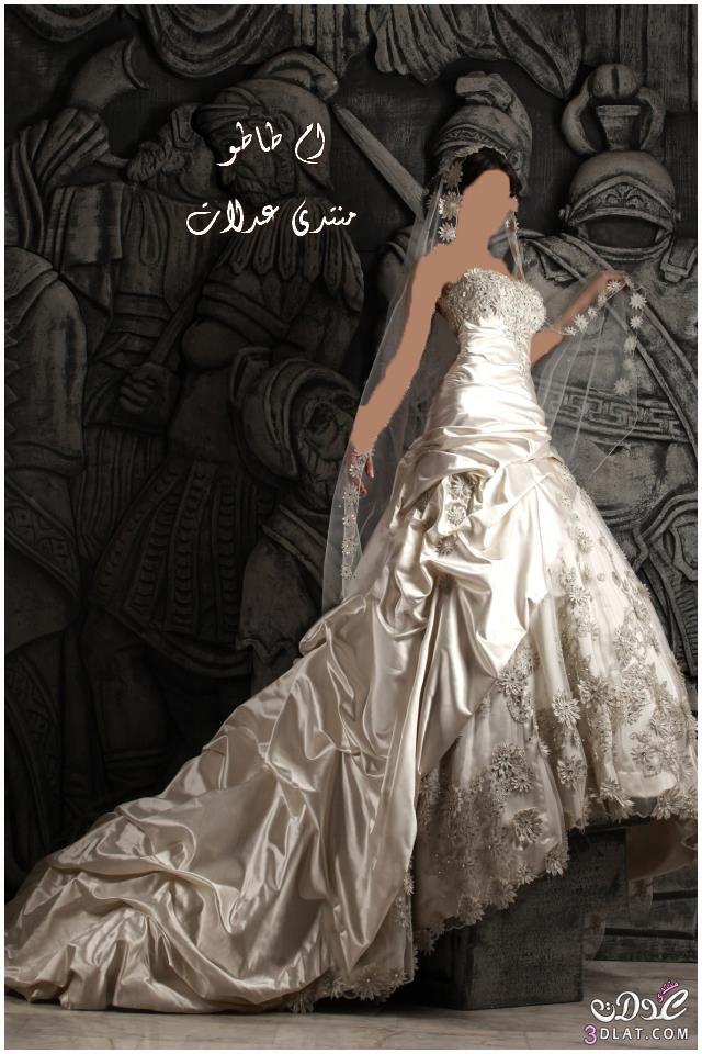 فساتين زفاف 2014 باللون الفضى,فساتين زفاف 2014 باللون الاوف وايت , جمال الابيض ف