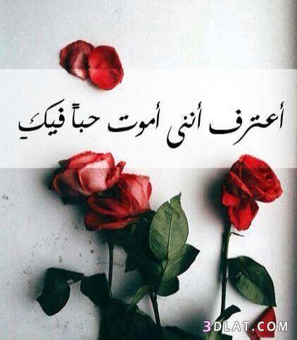 ,أجمل وغرام جميلة ,احلى رومانسية جميلة 3dlat.com_13_18_5d93