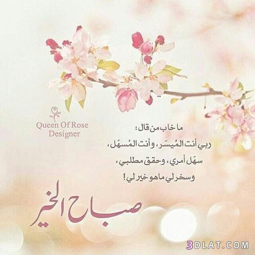 صباح الخير روعة,بطاقات صباح الخير,بوستات صباحية 3dlat.com_13_18_a6d3