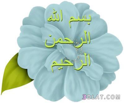 جعلناه نوراً...خالد أبوشادي الجزء الثالث 3dlat.com_13_18_c313