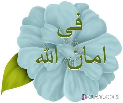جعلناه نوراً...خالد أبوشادي الجزء الثالث 3dlat.com_13_18_d634
