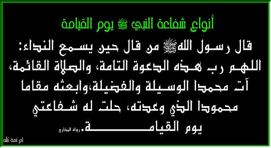 أنواع شفاعة النبي الله عليه وسلم 3dlat.com_13_18_ed94