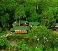 عجائب الغابات !!مناظر طبيعيه روعه وغريبه..صور للغابا ت في ...العالم 3dlat.com_1403265231