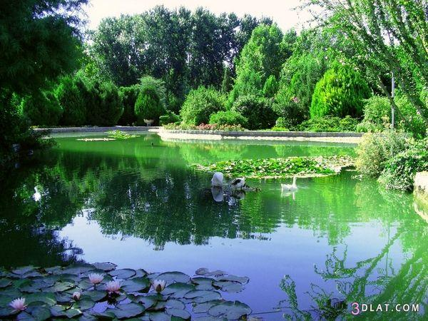 صور طبيعية خلابة , صور طبيعية مدهشة الشكل والجمال , اجمل واروع الصور الطبيعية 3dlat.com_1403358168