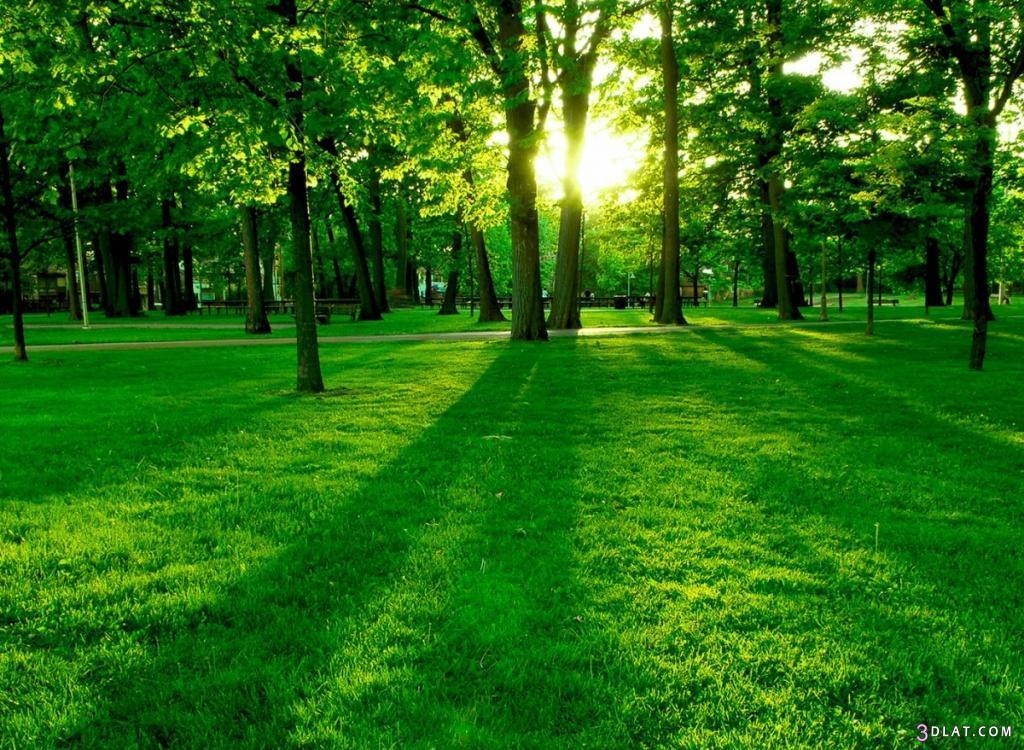 صور طبيعية خلابة , صور طبيعية مدهشة الشكل والجمال , اجمل واروع الصور الطبيعية 3dlat.com_1403358170