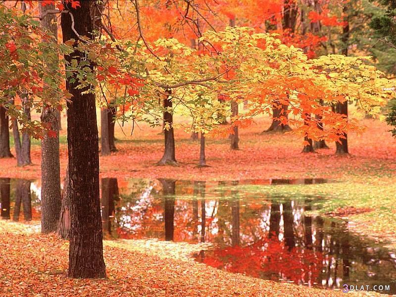 صور مناظر طبيعية , مناظر طبيعية خلابة , مناظر طبيعية. 3dlat.com_1405953721