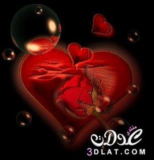 رومانسية قلوب وورود للعشاق ورود وقلوب 3dlat.com_1413040276