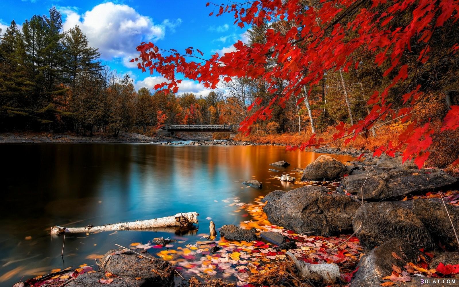 أجمل المناظر الطبيعية مناظر طبيعية خلابة 3dlat.com_14_18_1a90