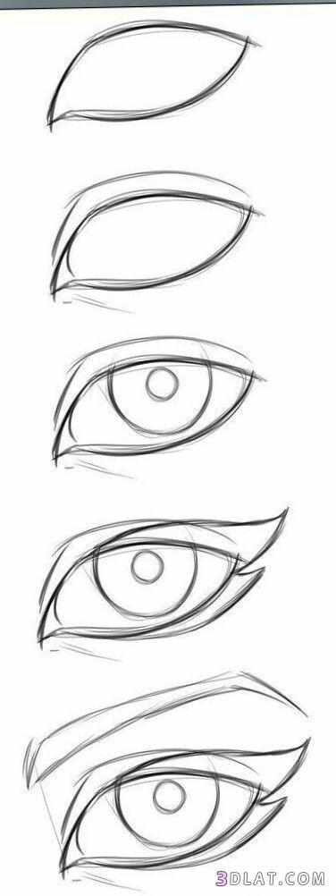 عيون مرسومة بالرصاص طريقة رسم العين بالخطوات رسومات عيون مختلفة