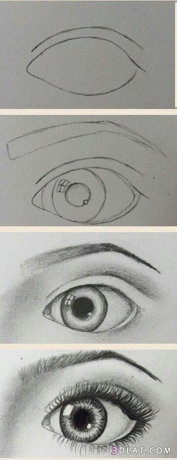 عيون مرسومة بالرصاص طريقة رسم العين بالخطوات رسومات عيون مختلفة بالخطوات20 ام مالك وميرنا