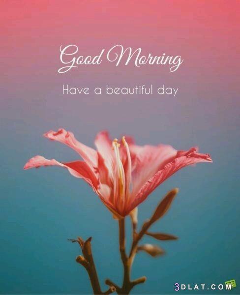 good, morning, ارقي, الخير, بالانجيليزيه, صباح, صور