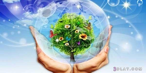 البيئة, تعبير, حمايــــة, موضوع