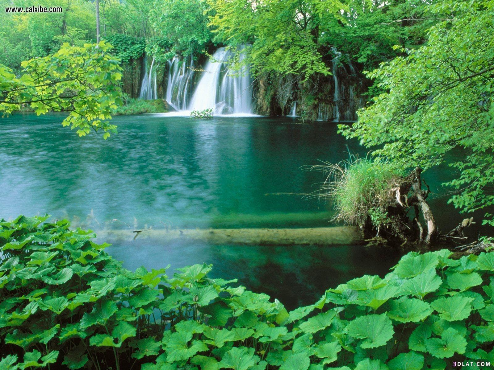 الطبيعه الخضراء شلالات طبيعية خلفيات الطبيعه 3dlat.com_17_18_42c8