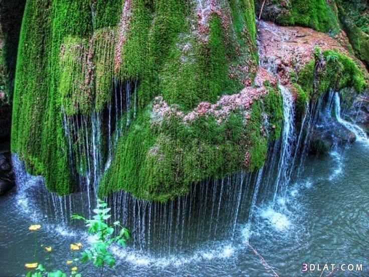 طبيعية ساحرة وجذابة جمال الطبيعه طبيعية 3dlat.com_17_18_59a3