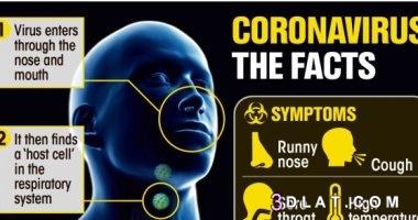 5 أخطاء تتسبب فى تفشى فيروس كورونا بالعالم  3dlat.com_17_20_336f_03677cec6ad21