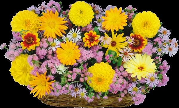 صور سلال ورود وأزهار الربيع 3dlat.com_19_18_8e2f