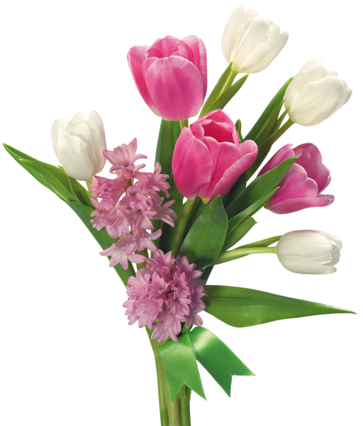 صور سلال ورود وأزهار الربيع 3dlat.com_19_18_b30b