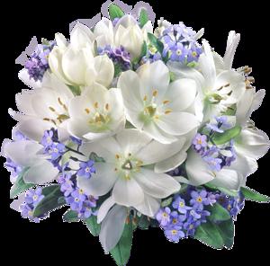 سكرابز زهور ، صور ورود وأزهار الربيع للتصميم ,سكرابز ورود بدون تحميل 3dlat.com_19_19_9ae0