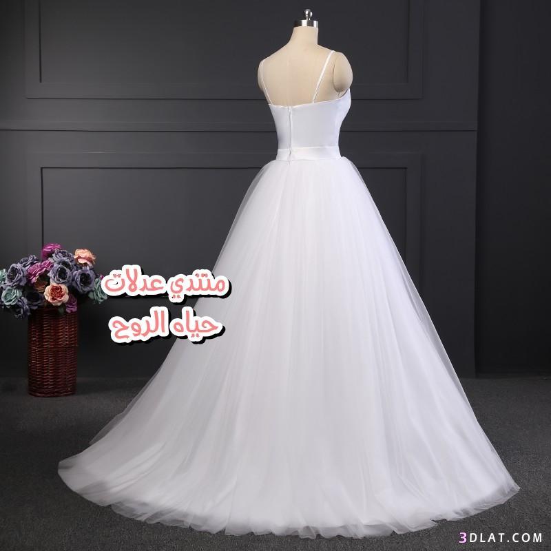 f32388340 صور فساتين زفاف , اجدد كولكشن من فساتين الزفاف 2020 , فساتين افراح بتصاميم.  2019 ...