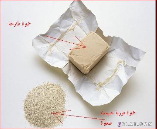 الخميرة وأنواعها وحفظها وكيفية استخدامها كيفيه 3dlat.com_20_18_adaa
