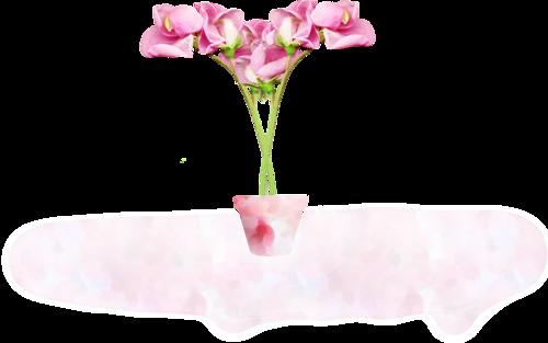 سكرابز زهور جميل