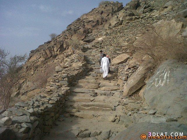 رحلة الذي أوَى إليه النبي بكرالصديق 3dlat.com_21_18_28f0
