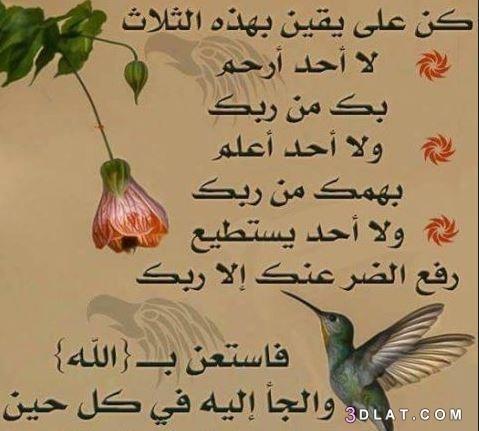 ومواعظ إسلامية أجمل الحكم والمواعظ ومواعظ 3dlat.com_22_18_9f9f
