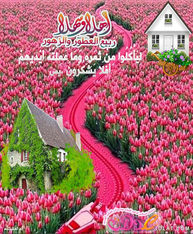 تصميمى تهنئة لقدوم الربيع بذكر آيات 3dlat.com_23_18_fc1b