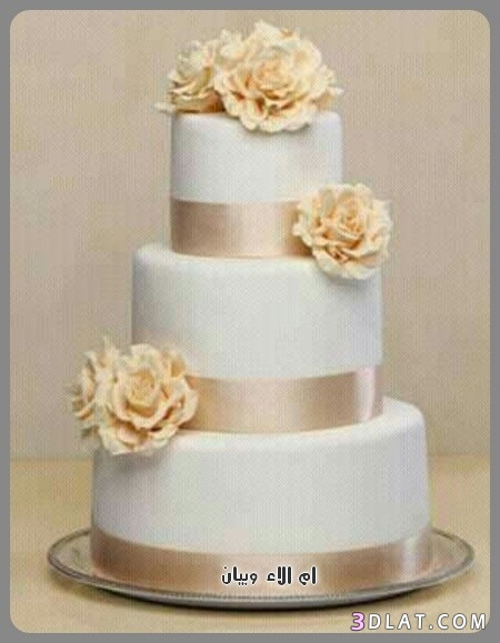 تورتات رائعة لاعراس 2019,اجمل كيكات حفلات 3dlat.com_24_18_060d