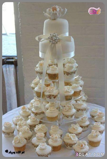 رائع لحفلات الزفاف,صور تورتات الكيب المقدمة 3dlat.com_24_18_aed8