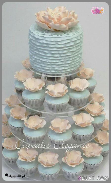 رائع لحفلات الزفاف,صور تورتات الكيب المقدمة 3dlat.com_24_18_fc98
