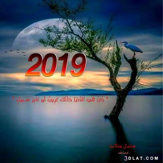 لعام 2019 تصميمي ،صور للعام الميلادى 3dlat.com_25_18_c939