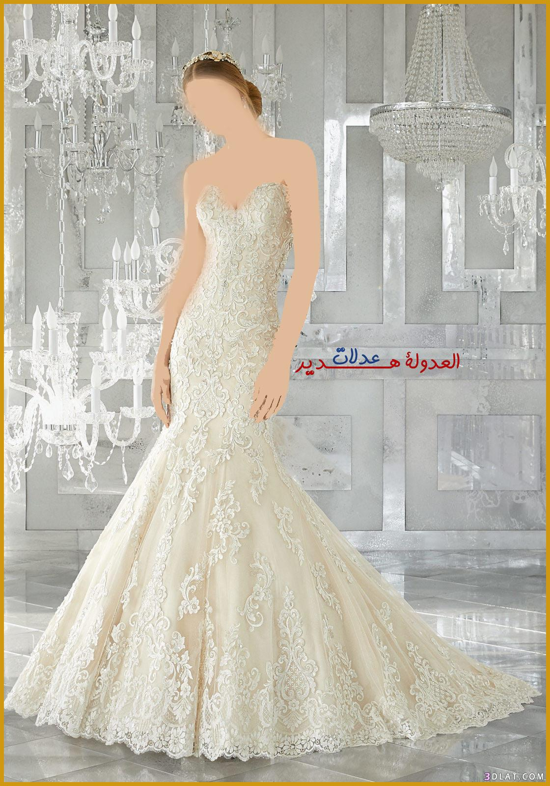 فساتين زفاف فخمة 2018,فساتين اعراس ناعمة,فساتين 3dlat.com_27_18_30f4