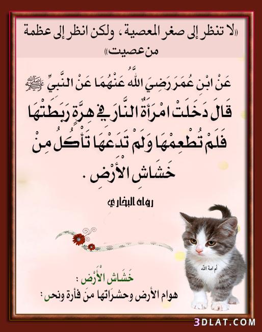 تصميمى صوربطاقات إسلامية لأحاديث النبي الله 3dlat.com_28_18_8406