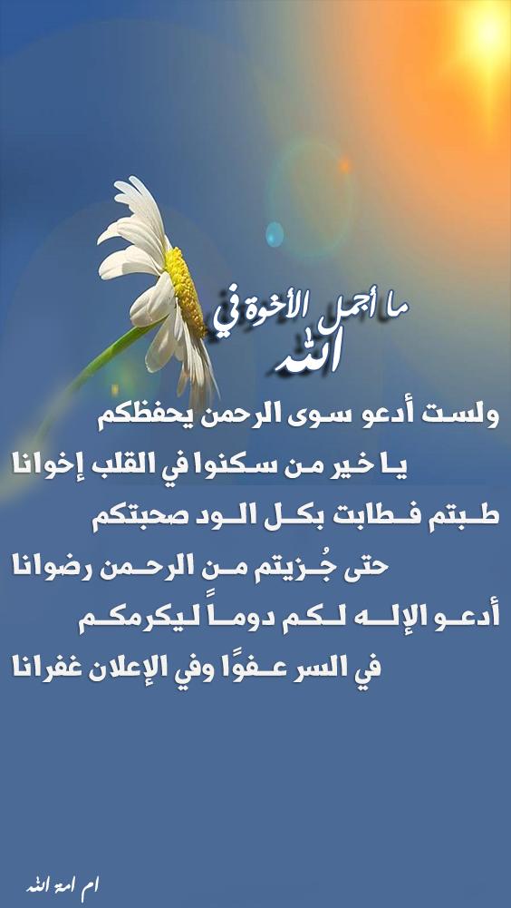 تصميمي صوراشعارتذكرك بالله ،صور أشعارلعلى طالب 3dlat.com_29_18_22f9